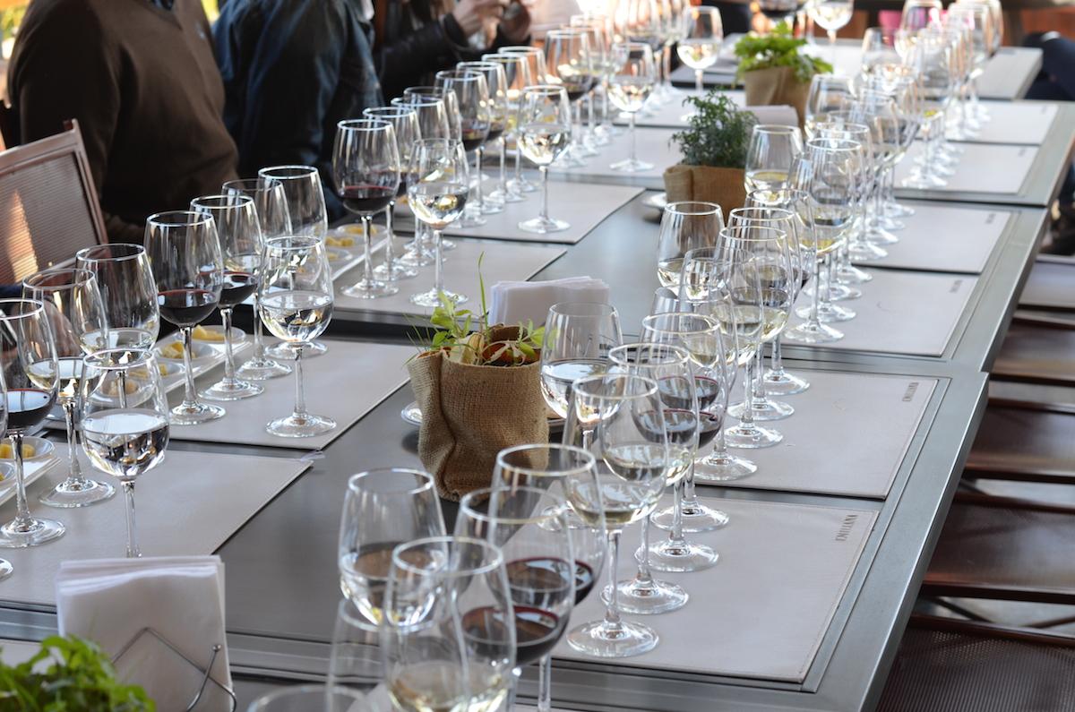 emiliana-vinhos-organicos-beta-pinheiro-3