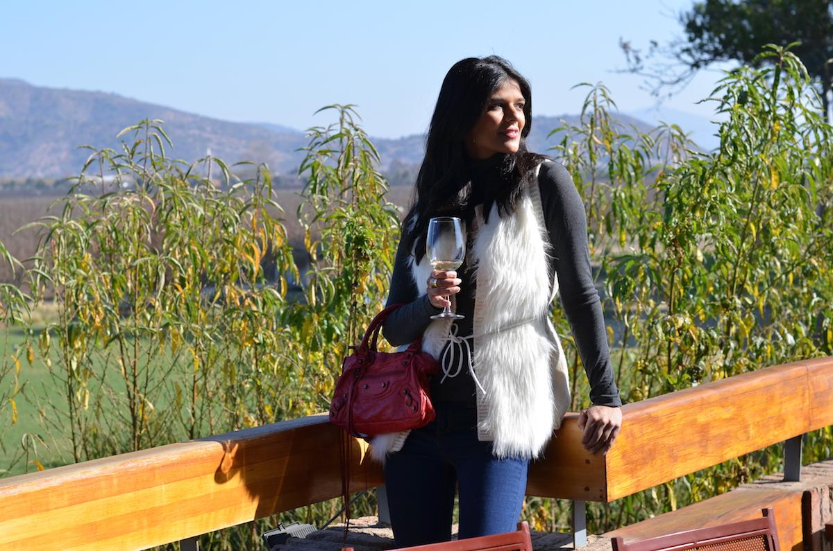 emiliana-vinhos-organicos-beta-pinheiro-9